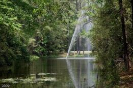 Tamarac Park Pond